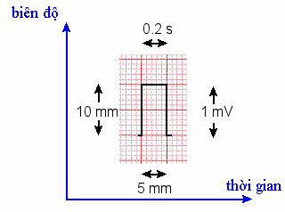 ecg-reference-pulse.png
