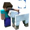 MinecraftPhoto